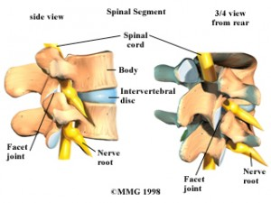 Low Back Pain A Prevalent Injury